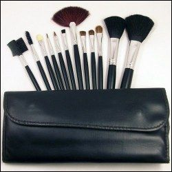 Set 12 Pensule profesionale make up